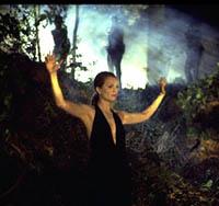 Kalt im Wald